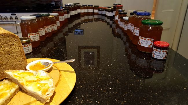 Marmalade-making!
