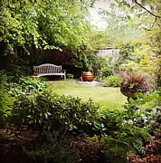 The Secret Garden - with gentle water feature this is a perfect place to relax